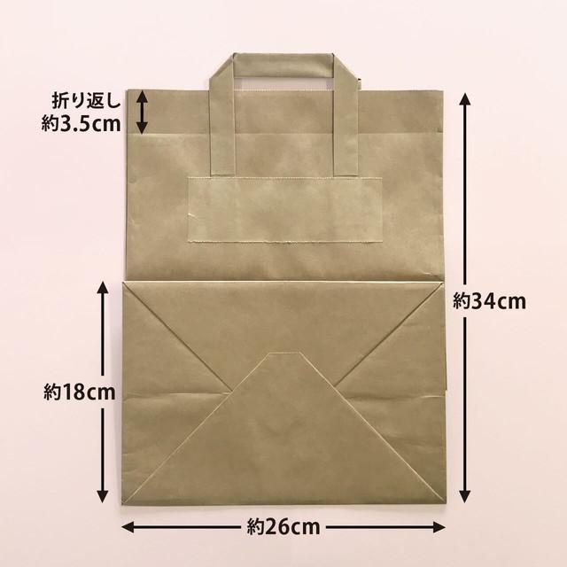 pap-0005